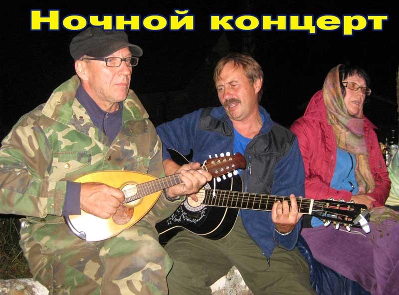 ночной концерт