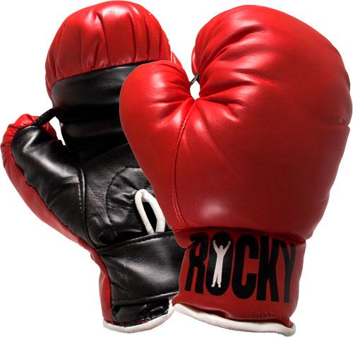 V Всероссийский турнир по боксу